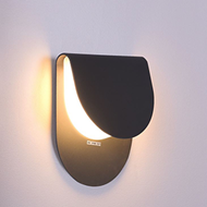 Picture of Wall and Ceiling Light