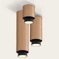 Picture of Ceiling Lighting